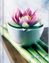 Lotus Notebook (LG) - Blank Pgs/1 Ruled Sheet