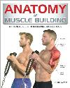 Anatomy of Muscle Building: A Trainer's Guide